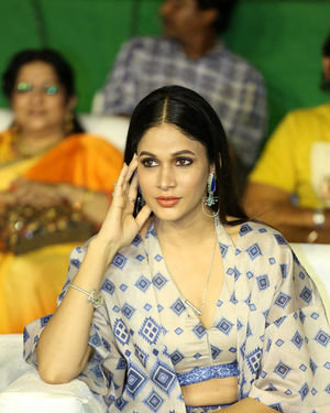 Lavanya Tripathi - Arjun Suravaram Movie Pre-Release Event Photos | Picture 1701679