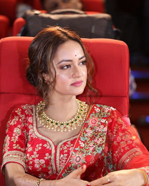 Shanvi Srivastava - Athade Srimannarayana Movie Trailer Launch Photos   Picture 1702627