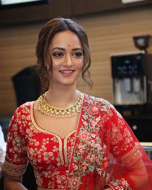 Shanvi Srivastava - Athade Srimannarayana Movie Trailer Launch Photos   Picture 1702604