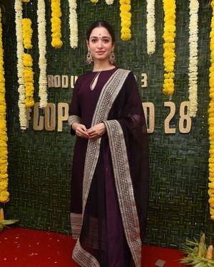 Tamanna Bhatia - Gopichand New Movie Launch Photos   Picture 1689009