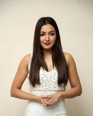 Catherine Tresa At Vadaladu Movie Pre-release Event Photos | Picture 1689711