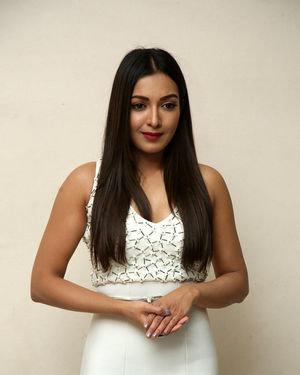 Catherine Tresa At Vadaladu Movie Pre-release Event Photos | Picture 1689708