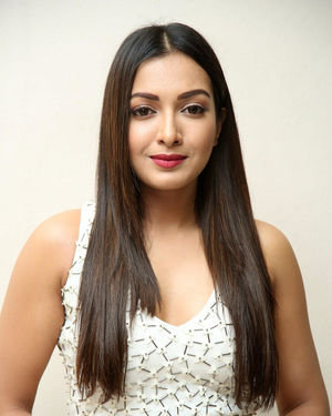 Catherine Tresa At Vadaladu Movie Pre-release Event Photos
