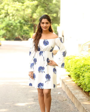 Payal Rajput - RDX Love Movie Trailer Launch Photos | Picture 1680876
