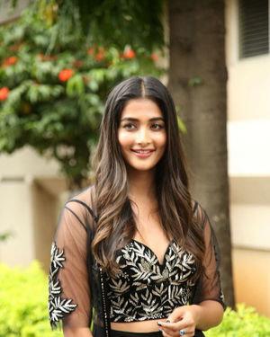Pooja Hegde - Valmiki Movie Press Meet Photos