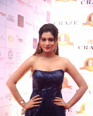 Payal Rajput - Dada Saheb Phalke Awards South 2019 Red Carpet Photos | Picture 1684609