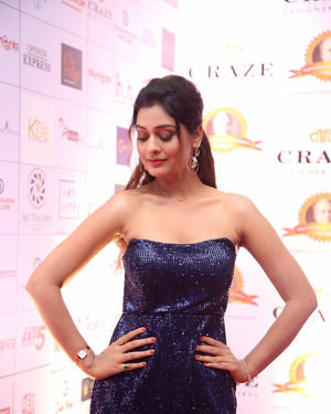 Payal Rajput - Dada Saheb Phalke Awards South 2019 Red Carpet Photos | Picture 1684610