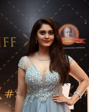 Surbhi Puranik - Dada Saheb Phalke Awards South 2019 Red Carpet Photos