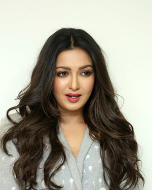 Catherine Tresa At World Famous Lover Movie Interview Photos   Picture 1719888