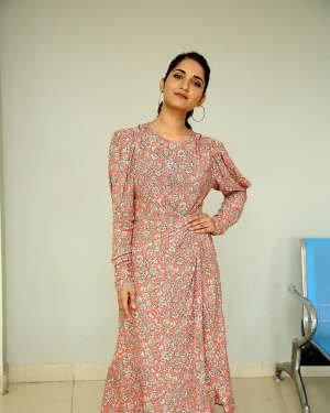Ruhani Sharma - Hit Telugu Movie Trailer Launch Photos | Picture 1721860