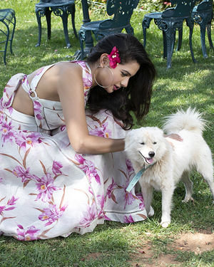 Actress Tanya Hope Latest Photoshoot | Picture 1713042