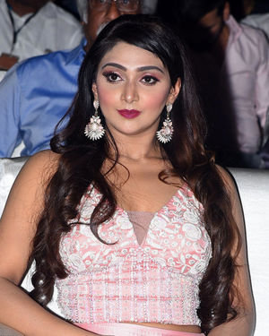 Natasha Doshi - Photos: Entha Manchivaadavuraa Movie Pre-release Event | Picture 1713693