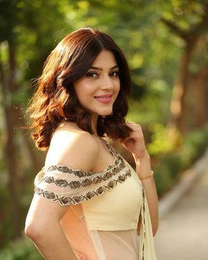 Mehreen Kaur At Entha Manchivaadavuraa Movie Interview Photos | Picture 1714056