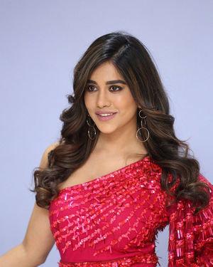 Nabha Natesh - Disco Raja Movie 3rd Song Release Press Meet Photos   Picture 1714810