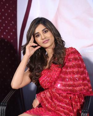 Nabha Natesh - Disco Raja Movie 3rd Song Release Press Meet Photos   Picture 1714821