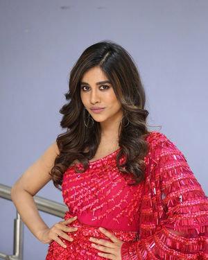 Nabha Natesh - Disco Raja Movie 3rd Song Release Press Meet Photos   Picture 1714806
