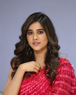Nabha Natesh - Disco Raja Movie 3rd Song Release Press Meet Photos   Picture 1714804