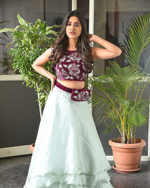 Nabha Natesh - Disco Raja Telugu Movie Press Meet Photos | Picture 1715282
