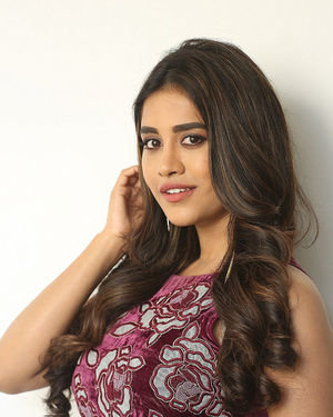 Nabha Natesh - Disco Raja Telugu Movie Press Meet Photos   Picture 1715272