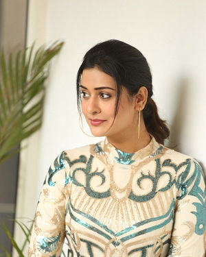 Payal Rajput - Disco Raja Telugu Movie Press Meet Photos | Picture 1715231