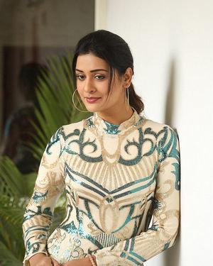 Payal Rajput - Disco Raja Telugu Movie Press Meet Photos | Picture 1715245