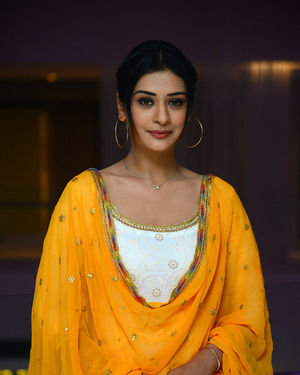 Payal Rajput - Disco Raja Movie Success Meet Photos | Picture 1717035