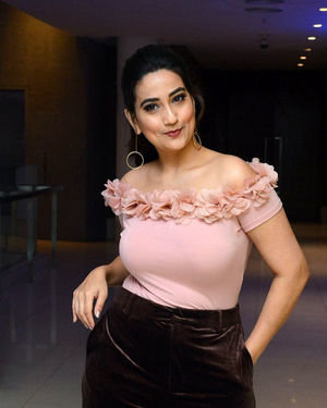 Manjusha - Disco Raja Movie Success Meet Photos | Picture 1717009