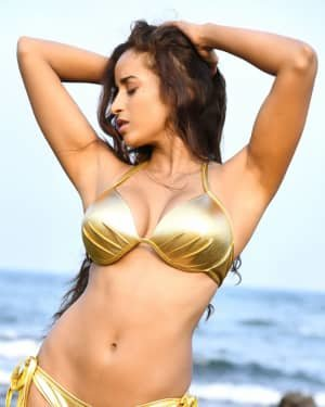 Enter The Girl Dragon - Enter The Girl Dragon Telugu Movie Hot Stills