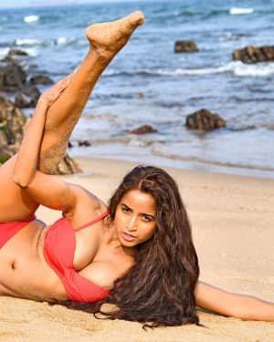 Pooja Bhalekar - Enter The Girl Dragon Telugu Movie Hot Stills   Picture 1725572