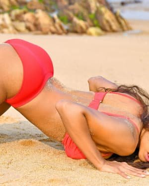 Pooja Bhalekar - Enter The Girl Dragon Telugu Movie Hot Stills   Picture 1725575