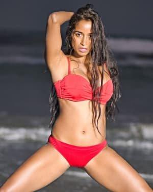 Pooja Bhalekar - Enter The Girl Dragon Telugu Movie Hot Stills   Picture 1725574