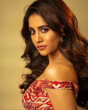 Nabha Natesh Latest Photoshoot | Picture 1725344
