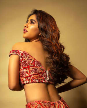 Nabha Natesh Latest Photoshoot | Picture 1725340