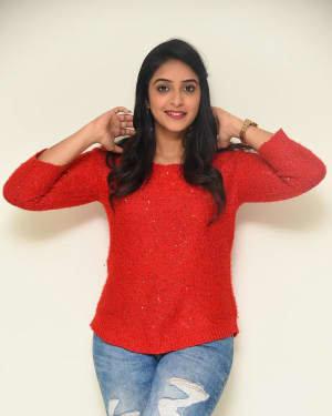 Nakshatra (Telugu Actress) - Palasa 1978 Movie Thanks Meet Photos   Picture 1725539