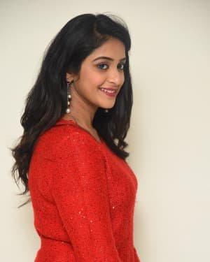 Nakshatra (Telugu Actress) - Palasa 1978 Movie Thanks Meet Photos   Picture 1725534