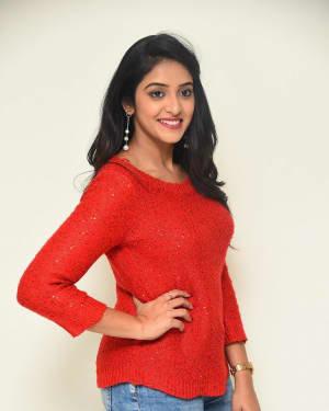 Nakshatra (Telugu Actress) - Palasa 1978 Movie Thanks Meet Photos   Picture 1725536