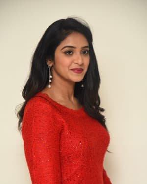 Nakshatra (Telugu Actress) - Palasa 1978 Movie Thanks Meet Photos   Picture 1725532