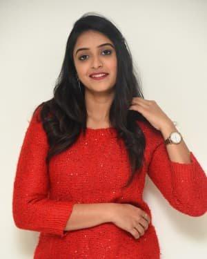 Nakshatra (Telugu Actress) - Palasa 1978 Movie Thanks Meet Photos | Picture 1725546