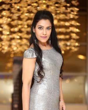 Trishna Mukherjee - Madha Movie Pre Release Event Photos | Picture 1726032