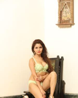 Gehana Vasisth Latest Hot Photoshoot | Picture 1731661